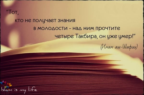 -ggwqwO5DmM