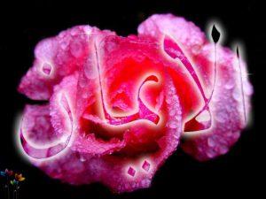 iman01_b-e1334080029625